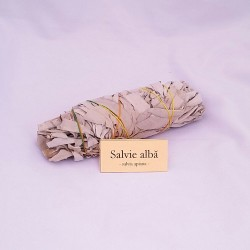 Salvie alba, buchet mediu, Salvia Apiana 48 gr din America de Sud, purificare cristale, aura, spatiu