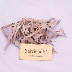 Salvie alba, ramurele, Salvia Apiana, crengute